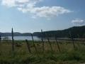 Lago Ampollino d'estate_Foto di Mariantonietta Talarico