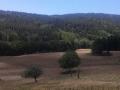 montenero_quisila