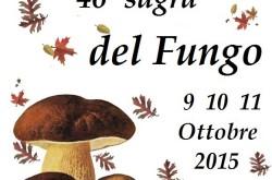 46 Sagra del fungo