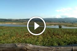 Gal Sila, video documentario sulla Sila Grande