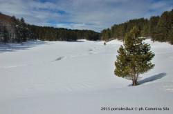 Escursione lungo il sentiero 410 PNS di  Macchialonga-Serra Ripollata