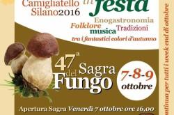 Ottobre in festa Camigliatello Silano 2016 – 47 sagra del fungo