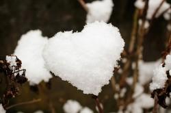I doni della neve