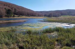 #adottaunsentiero – Alta Valle del Tacina, il laghetto