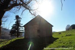 #adottaunsentiero – Alta Valle del fiume Tacina, le vaccherie