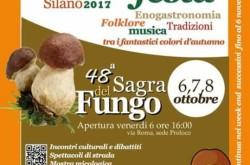 Sagra del Fungo 2017